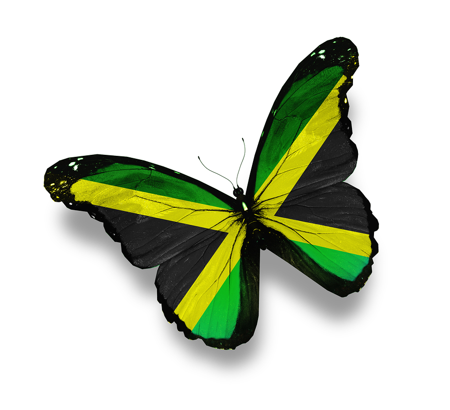 the jamaica flag